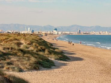 El Saler, the wild Valencian beach that was saved from destruction