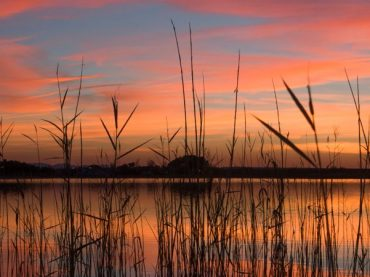 The lagoons of Villafranca de los Caballeros, a heaven of freshness in the center of Spain