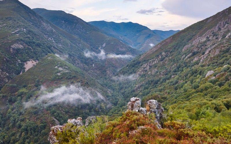 Integral Natural Reserve of Muniellos
