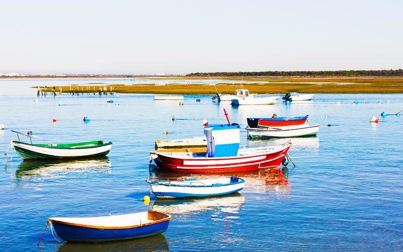 Entorno de las marismas de Sancti Petri