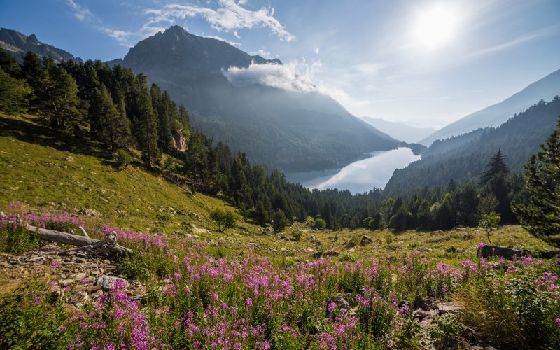 Sant_Maurici_lake,_Aigüestortes_i_Estany_de_Sant_Maurici_National_Park,_Spain_-_Diliff