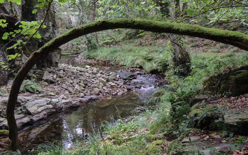 Porcía River