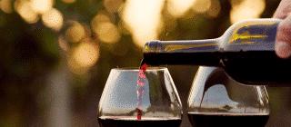 vino torroella montgri