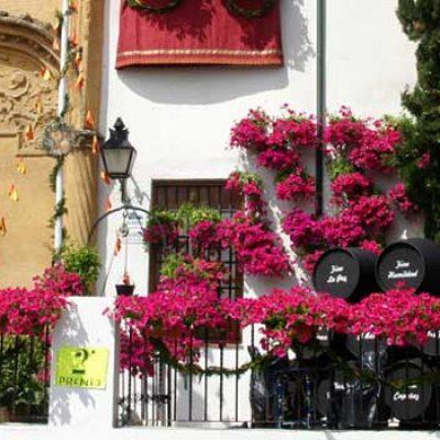 May Crosses Festival of Cordoba