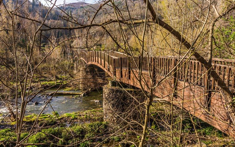 Bridge over the river Fluvià   Shutterstock