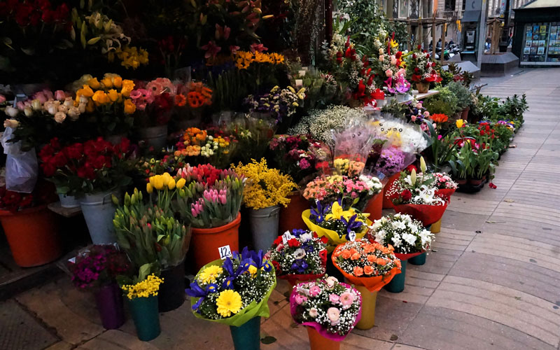 Flower stall on Las Ramblas in Barcelona | Photo: Shutterstock
