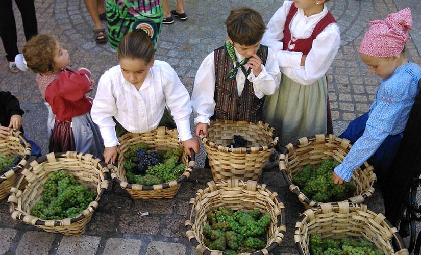 fiesta vendimia septiembre espana fascinante