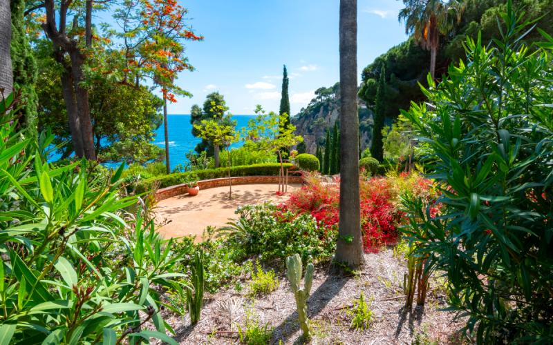 Marimurtra garden
