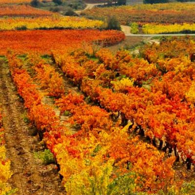 Getaway and what to see in La Rioja