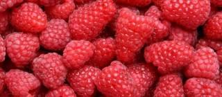 fresas tipico huelva