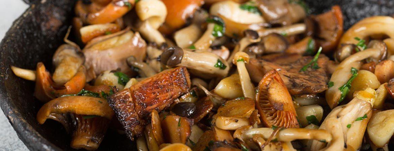recipes with mushrooms