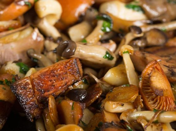 Recipes with mushrooms, making the most of their season