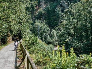 The Bear Path, a journey through the green Asturias
