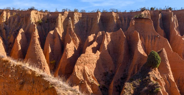 The gullies of Alpedrete de la Sierra, a Martian landscape