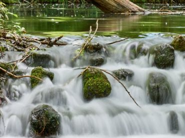 The most beautiful river sources in Spain