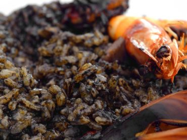 Black rice with alioli, with the best seafood of the eastern coast of Spain