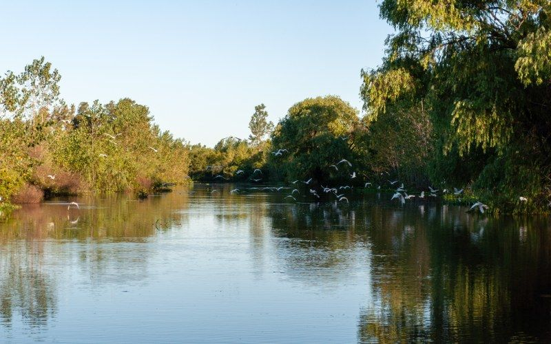 La Plata River