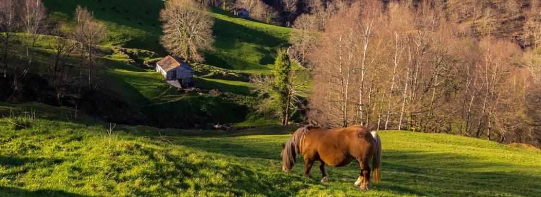 A three-day route through the Cantabria of the Pasiegos Valleys