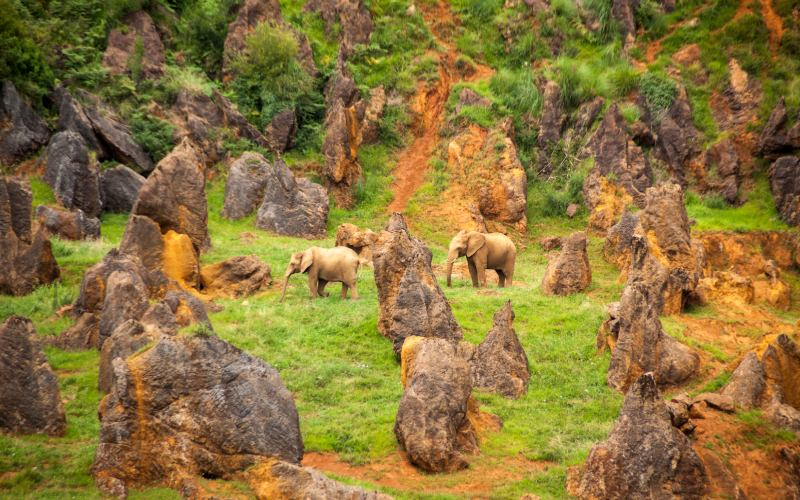 Cabárceno Nature Park
